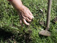 Curso de jardinería en Cedel Carrasco Norte