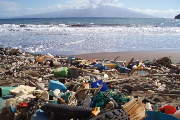 Out to Sea? The Plastic Garbage Project