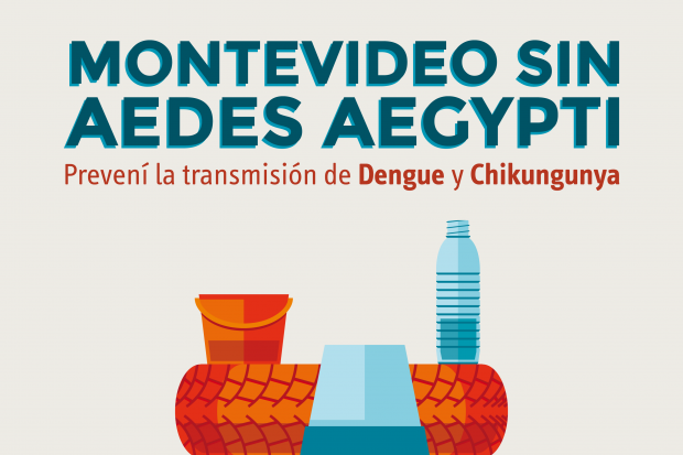 Dengue_Campaña