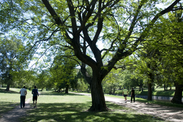 Parque Prado
