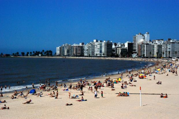 Playa Pocitos