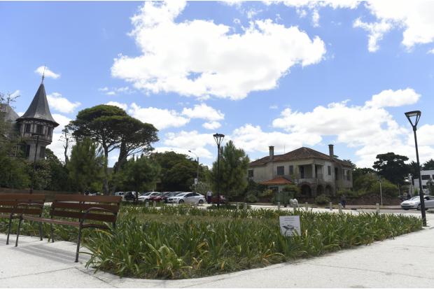 Jardín de lluvia en barrio Carrasco