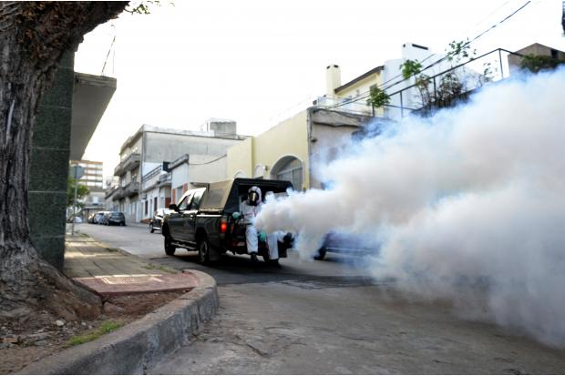 Fumigacion espacial en Pocitos. Campaña contra el mosquito aedes aegypti