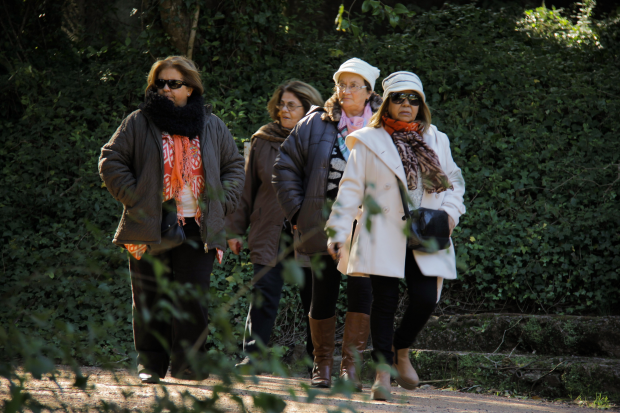 Excursión de personas mayores