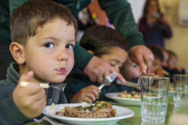 La Alimentación Adecuada es un Derecho