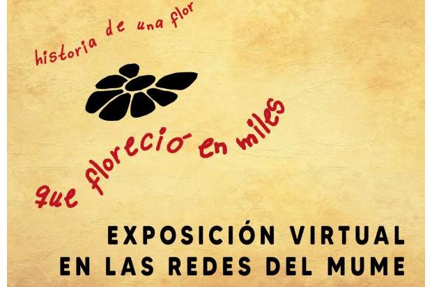 Exposición Virtual: Historia de una Flor