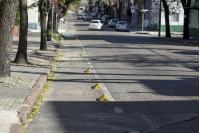 Bicicircuito Montevideo. Ciclovía Nueva Palmira
