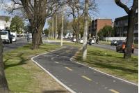 Bicicircuito Montevideo. Bicisenda Larrañaga