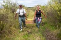 Donación de manzanas en ayuda al Plan ABC