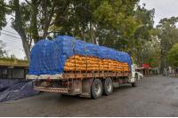 Donación de papas en el marco del Plan ABC