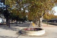 barrio Peñarol