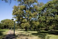Parque Batlle