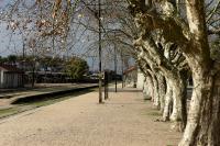 Recorrida por el barrio Peñarol