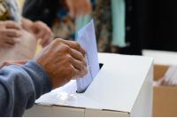 Elecciones consejos vecinales y presupuesto participativo