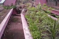 Curso Huerta Agroecológica Urbana