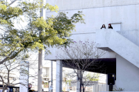 Intervención urbana por el centenario de Idea Vilariño