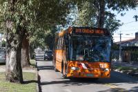 Omnibus en avenida Rivera