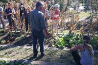 Curso huerta orgánica Jardín Botánico