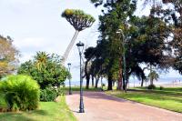 Montevideo Mejora Colocacion Luminarias  Parque Rodo