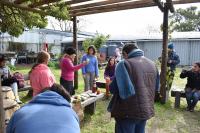 Proyecto Huerta en casa