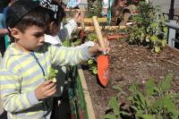Huerta inclusiva en Parque de la Amistad