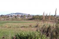 Arroyo Pantanoso