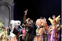 Apertura del concurso oficial del Carnaval 2018.