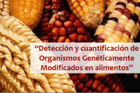 Taller OGM