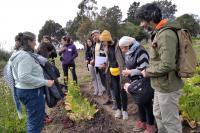 Curso teórico práctico de la Escuela Abierta de Agroecología