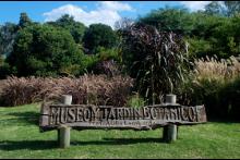 Cursos en el Jardín Botánico