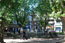 Plaza Matriz - Montevideo