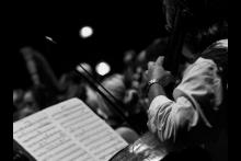 """""""AMADEUS"""" Festival Mozart"""