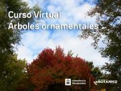 Curso Virtual Árboles Ornamentales