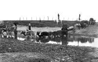 Historia de las aguas corrientes del Uruguay